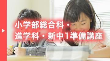 小学部総合科・進学科